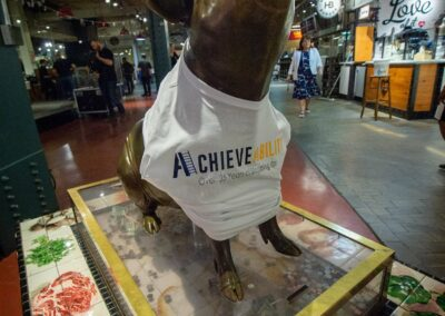 statue of bronze pig in achievability t shirt
